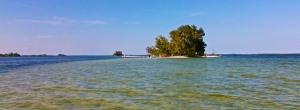 Island 17